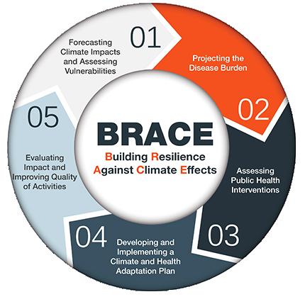 BRACE Framework